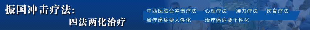 振(zhen)國沖擊療法︰四法兩化治療